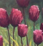 <i>Royal Tulips</i>