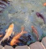 <em>Koi Pond</em>