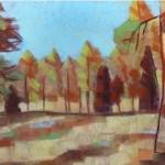 tormoen_woodland_park